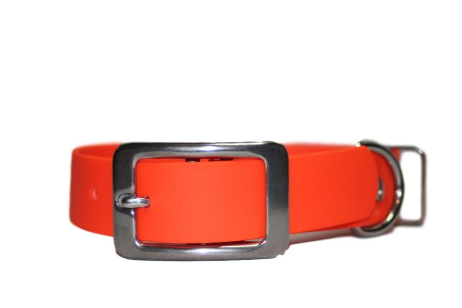 Orange Biothane BuckleCollar