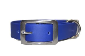 Royal Blue Biothane Buckle Collar