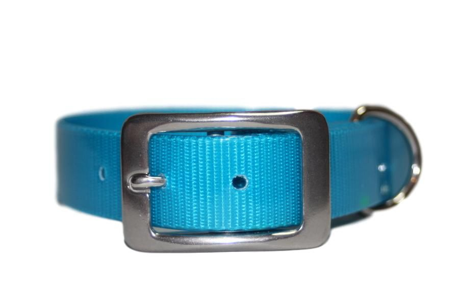 Turquoise Blue Biothane Buckle Collar