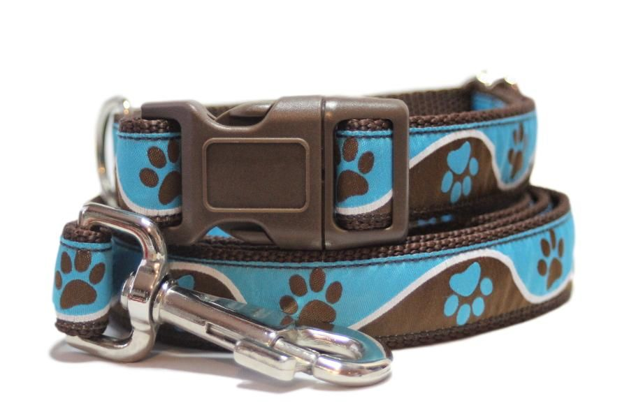 Brown & Blue Paws