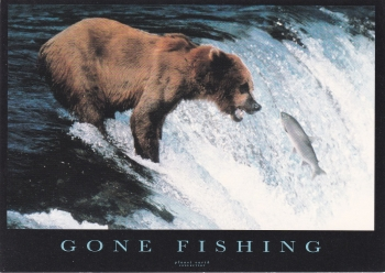 Gone Fishing ( Planet Earth Collection )  Postcard