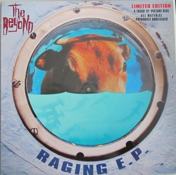 "Beyond   Raging  E.P   Limited Edition 4 Track Vinyl 12"" Picture Disc  Single    Pre-Used"