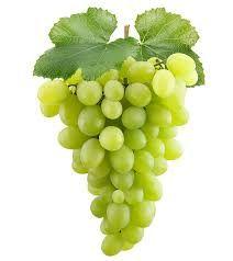 GENUINE GRAPE 1KG genuine original MS Jam grapes  flavour 1kg  SHIP FROM UK
