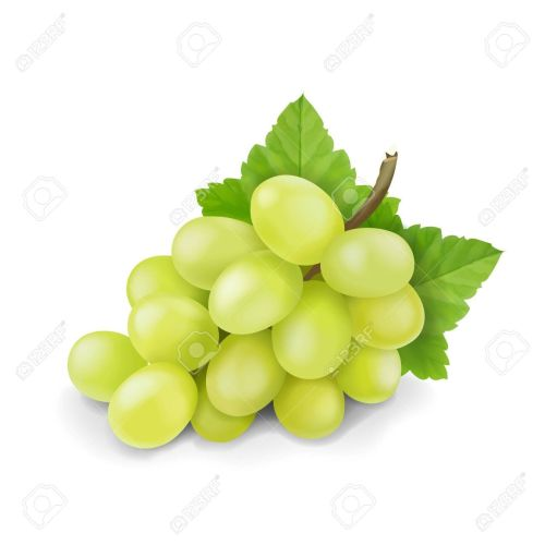 GRAPES FLAVOUR  ORGANIC FRUIT JAM GRAPES  FLAVOUR 500g  SHIP FROM UK