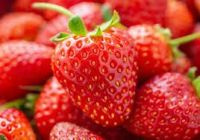 GENUINE STRAWBERRY FLAVOUR  ORGANIC FRUIT JAM STRAWBERRY FLAVOUR 1kg SHIP FROM UK