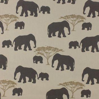 Elephants - Grey