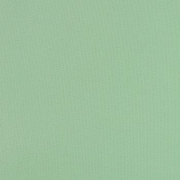 Nature's Moods by Fabric Freedom - Mint (£6.00pm)