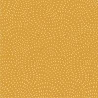 Dashwood - Twist - Gold (£10pm)