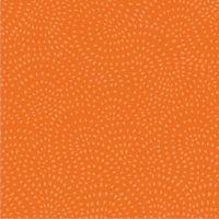 Dashwood - Twist - Pumpkin (£10pm)