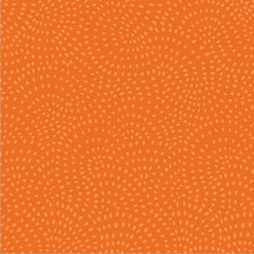 Dashwood - Twist - Pumpkin