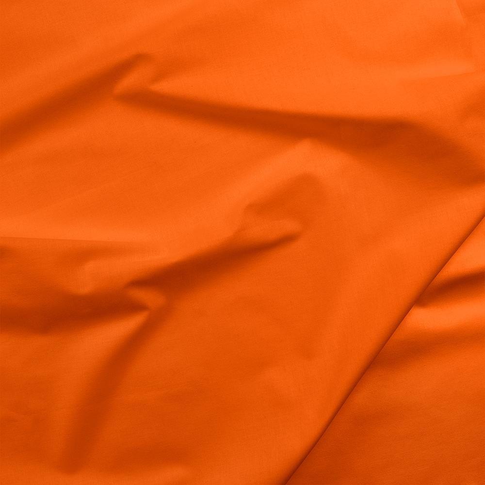 Painters Palette - Carrot