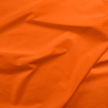 Painters Palette - Carrot (£7.50pm)