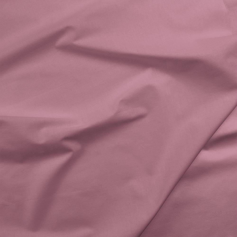 Painters Palette - Orchid