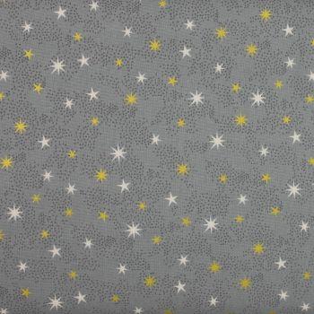 Christmas 21 Scandi - Star Silver (£12pm)