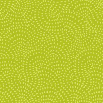 Dashwood - Twist - Lime (£10pm) - NEW COLOUR