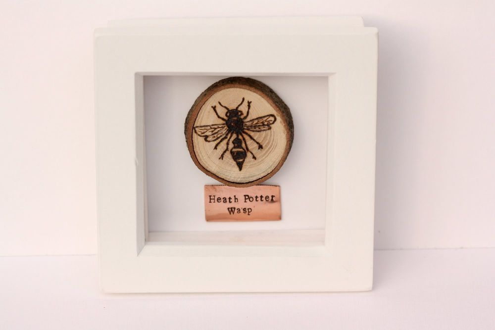 Wooden Framed Insect - Heath Potter Wasp
