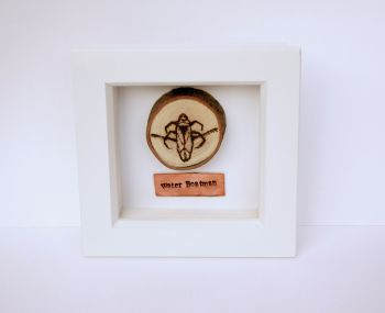 Wooden Framed Pond Life Insect - Water Boatman