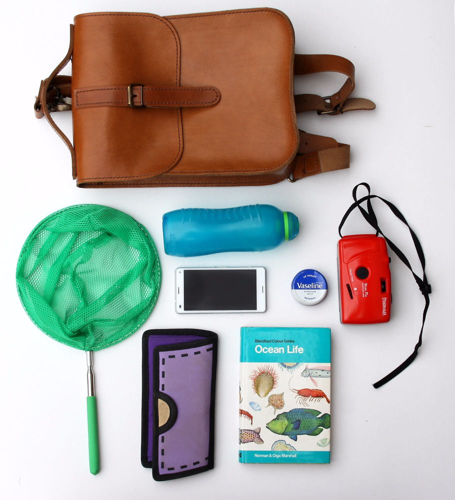 Whats inside my backpack rockpooling