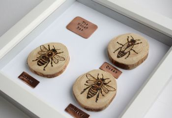 Wooden Framed Four Insects Wall Decor - The Honey Bee 2