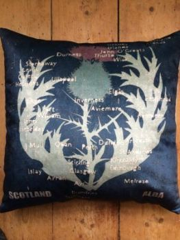 VELVET THISTLE / MAP CUSHION