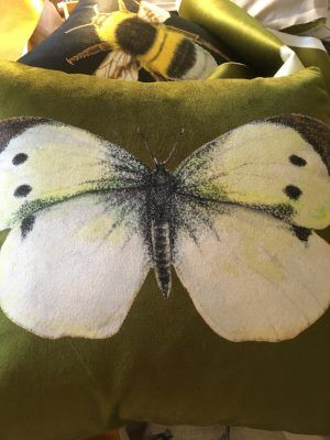 VELVET OLIVE BUTTERFLY CUSHION