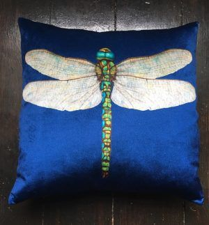 Dragonfly cushion – velvet chenille