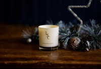 Winter Cranberry Candle  20cl
