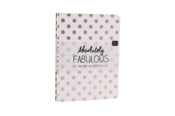 Gold Detail Notebooks Set of 2 - A6