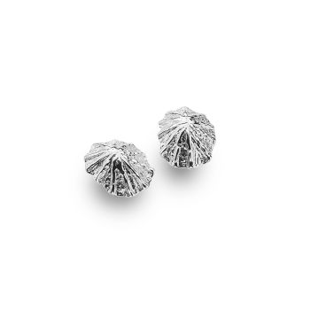Sterling Silver Limpet Stud Earrings