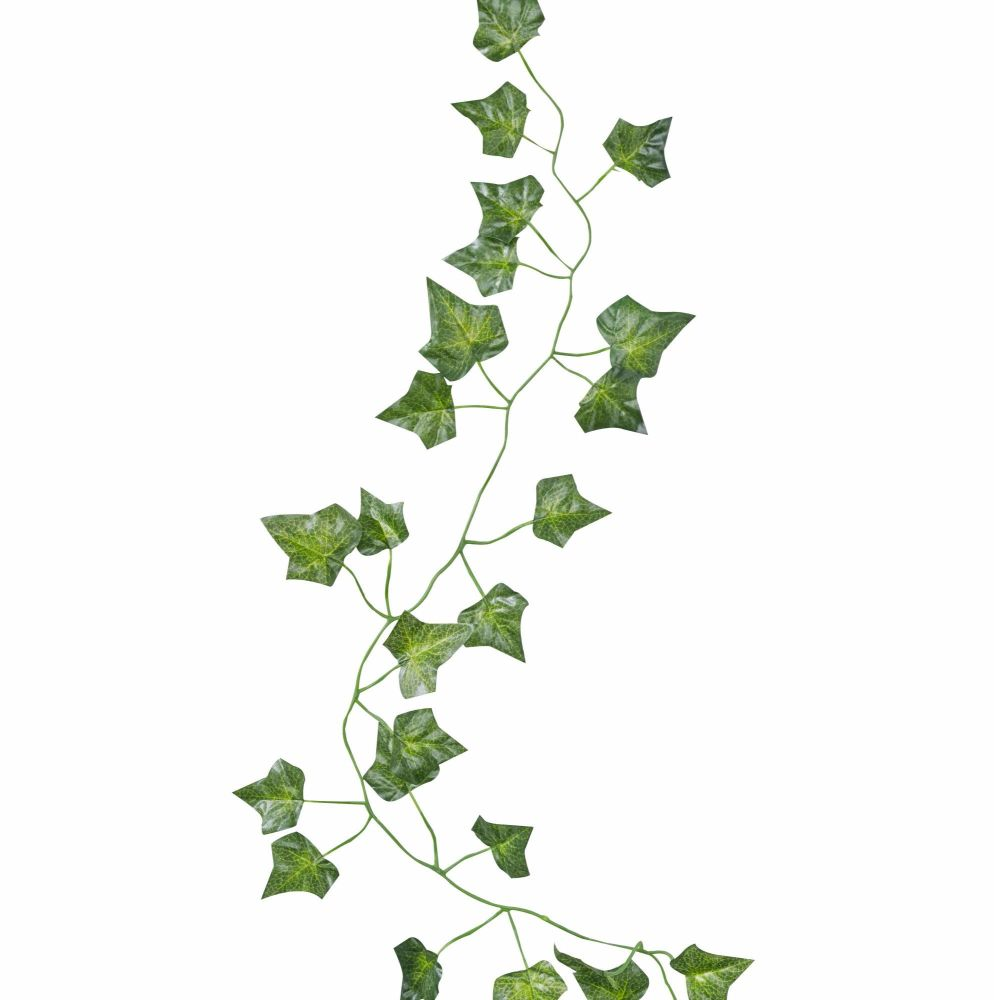 Ginger Ray Decorative Vines - Set of 5