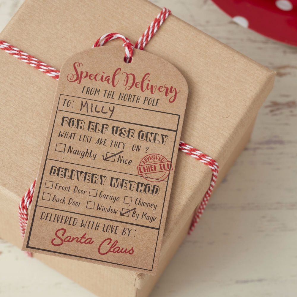 Santa Special Delivery Gift Tags - Pack of 6