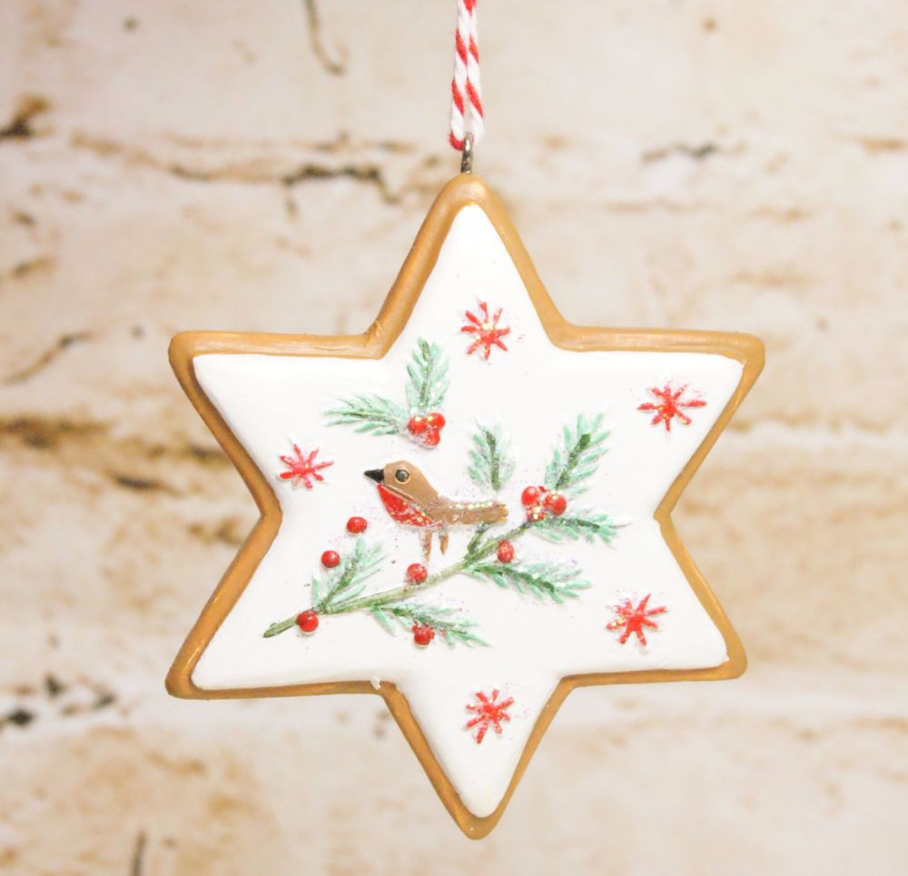 Gisela Graham Resin Iced Star Biscuit Hanging Decoration- 3 Assorted Design