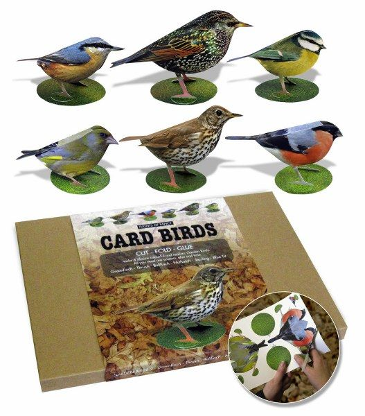 Garden Birds - Make your own 3D Card Birds Set