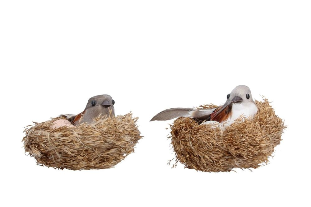 Gisela Graham Feather Bird in a Nest Clip Decoration - 2 Assorted