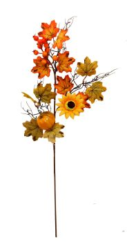 Autumnal Sunflower and Pumpkin Stem