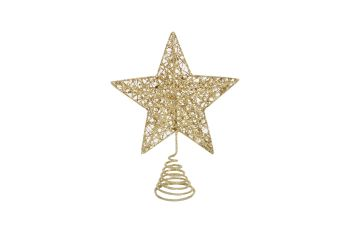 Gisela Graham Gold Wire Mesh Tree Top Star