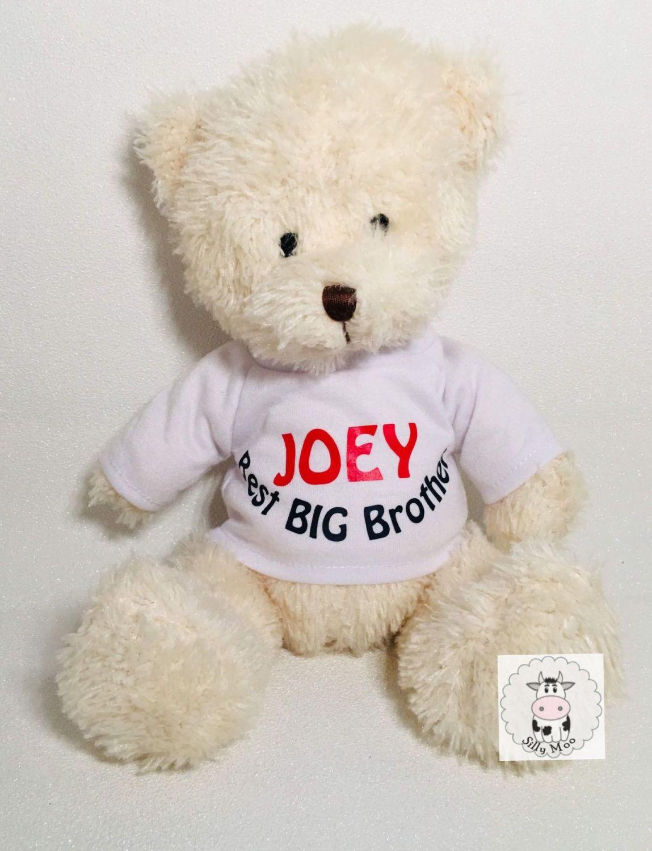 Hay Hay Chicken Stuffed Animal, Personalised Best Big Brother Best Big Sister Teddy