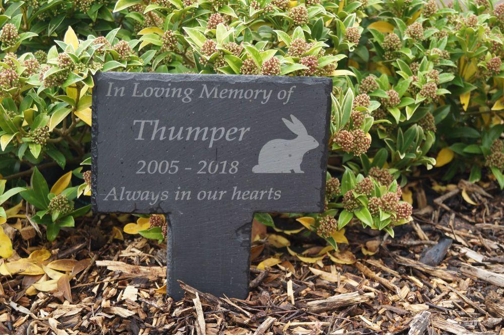Pet memorial plaque, grave marker, pet headstone, in loving memory