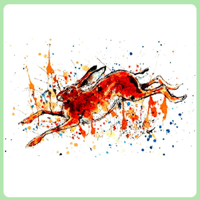 Hare - A Retreat
