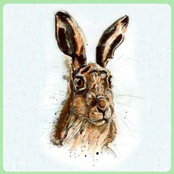 Hare Portrait 2