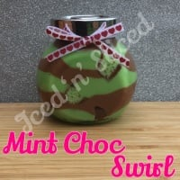 Mint Choc Swirl little pot of fudge