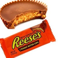 NEW Reeses mini fudge cup