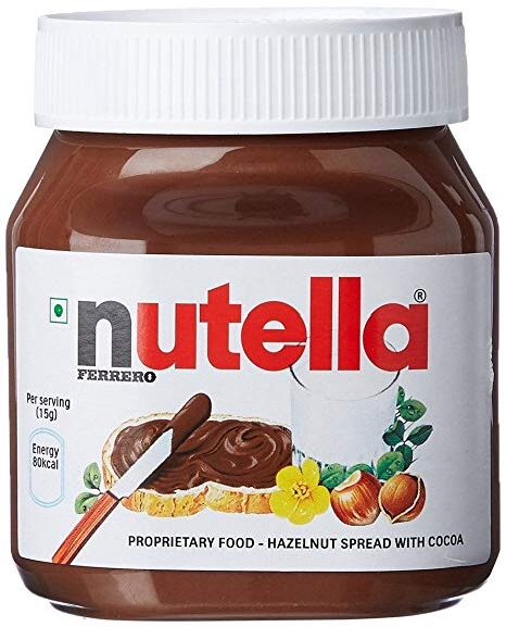 NEW Nutella giant pot of fudge