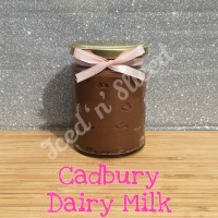 Cadbury Dairy Milk little pot of fudge