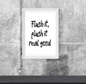 Flush It Print