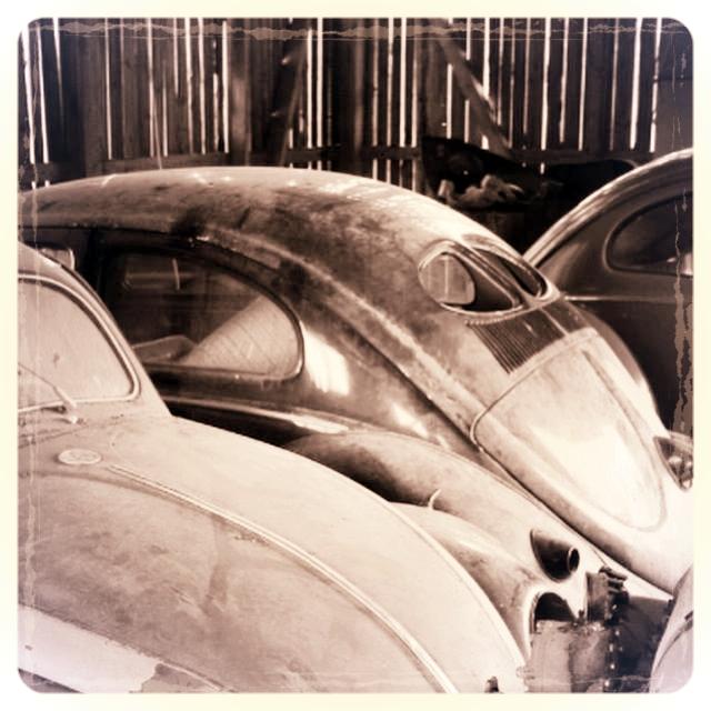 Beetle parts.