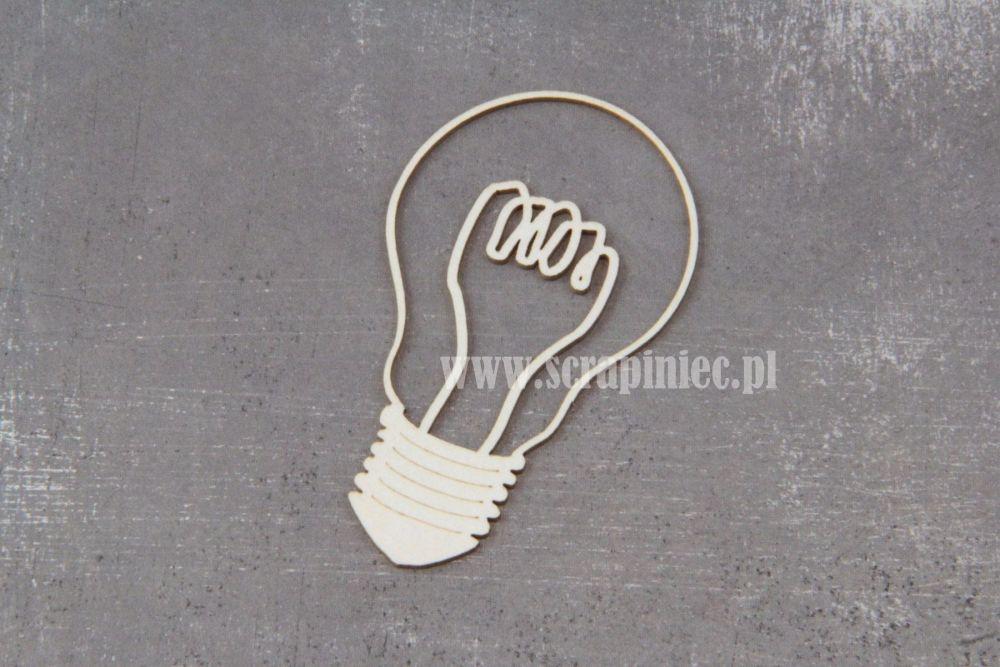 Light bulb large