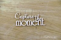 Words - Capture the Moment (3751)