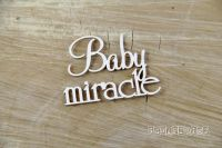 Words - Baby miracle (3754)