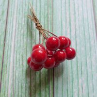 Mini Red Berries
